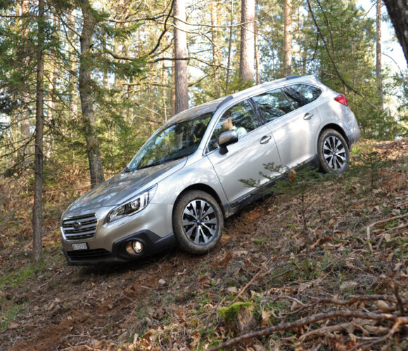 Subaru Outback 2015 Forest Downhill